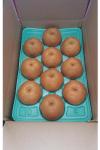 豊水5L5kg箱(10個入り)4000円