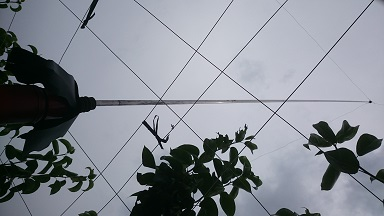 梨畑 鳥おどし3