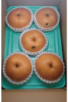 愛宕1kg玉5kg箱(5個入り)3780円