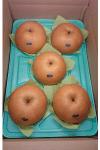 新高5玉5kg箱(5個入り)4100円