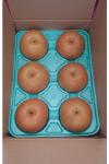 豊水5L3kg箱(6個入り)2910円